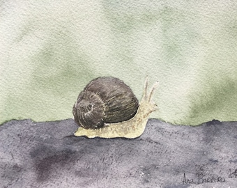 Original watercolor Snail