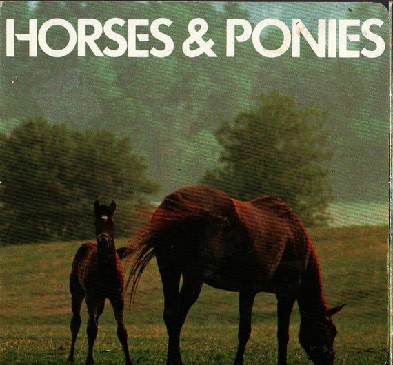 Horses and Ponies Board Book + 1984 + Vintage Kids Book