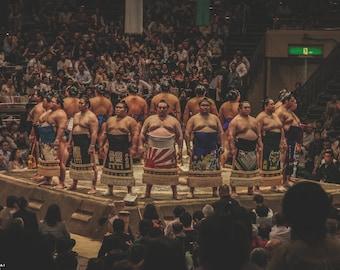Print - Limited edition - O sumo