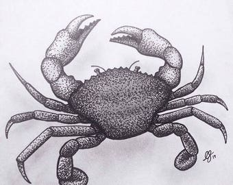 Crab Drawing Print - A4