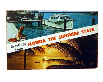"Vintage Glossy 3.5"" x 5.5"" Scenic Postcard - ""Greetings from Florida The Sunshine State"" - FREE SHIPPING"