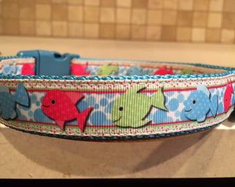 Schoolin' Around Large and Medium dog collar & Optional Matching Leash