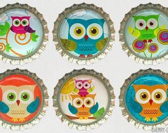 Owl Magnet Set, 6 Bottle Cap Magnets, kitchen organization, owl fridge magnet, owl baby shower favor, owl theme party, owl decor party favor