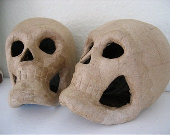 1 Unpainted Day of the Dead Skulls Halloween