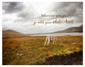 Photography Horse 8 x 10 Fine Art Nature Dreamy Photography Wild Horses Connemara Ireland-Inspirational Poster-color