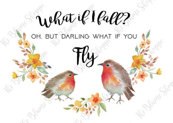Darling Robin
