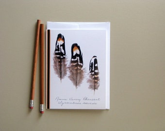 Feather greeting card, natural feathers, Reeves Venery Pheasant, golden yellow, no.01
