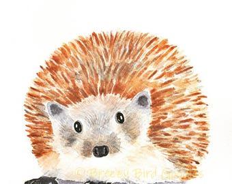 Hedgehog Print, Watercolor Hedgehog, Erinaceinae Print, Watercolor Erinaceinae, Hedgehog Illustration, Woodland Animal, Nursery Hedgehog
