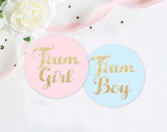 Gender Reveal Party Stickers, Team Pink Team Blue Stickers, pink and blue party, team girl and team boy stickers, sticker set