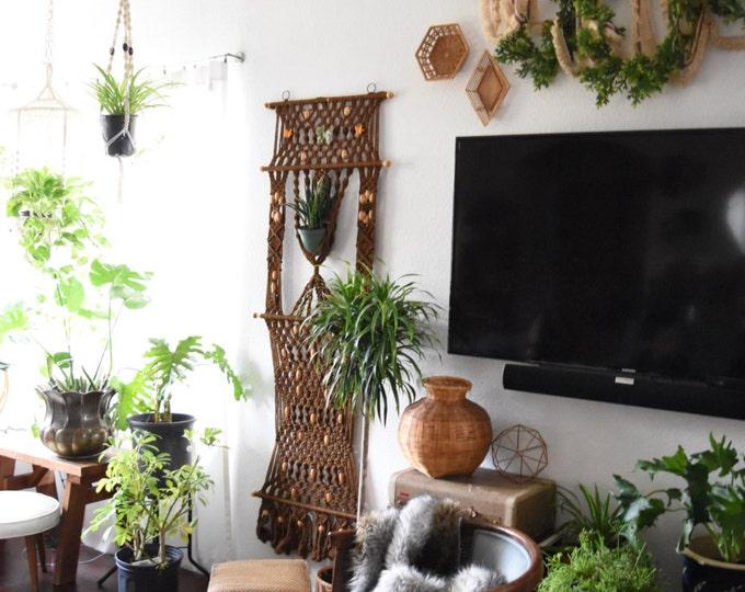 large wall hanging macrame planter / indoor gardening / tapestry weaving / brown