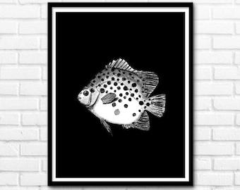 Fish Print, Black and White Prints, Modern Printable Art, Black Prints, Nature Decor, Animal Print, Wall Decor INSTANT DOWNLOAD - 1057