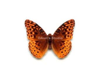 12 Small Paper Butterflies, Realistic 1 inch Paper Butterflies - Orange spotted Butterfly