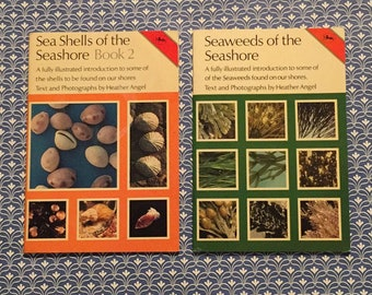 sea shells of the sea shore book2.seaweeds.Heather Angel.vintage photography books.beach wildlife,nature.coffee table reading