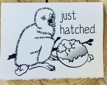 Just Hatched - New Baby Card
