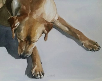 Dogs, Dog Portraits, Pet Portraits, Dog Painting, Watercolor Painting