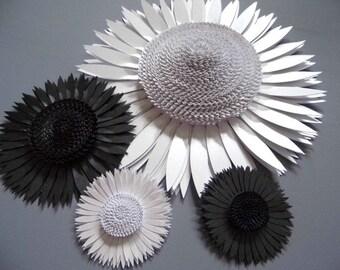 Black and white monochrome sunflower backdrop
