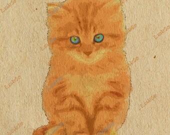 Red kitten.