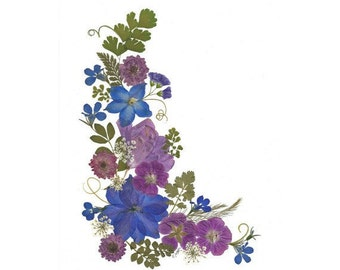 Pressed Flower Cards - Set of 6 Notecards - Blank Stationery - #054