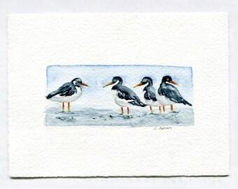 Shorebirds Original Watercolor