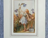 Harebell Flower Fairy Vin...