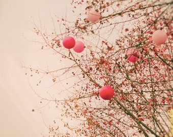 "Paris Photography - pink balloons Paris winter trees romantic art prints valentine decor 8x10 11x14 5x7 paris themed room ""Love in the Air"""