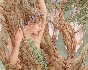 Woodland Nymph 8.5x11 Signed Print
