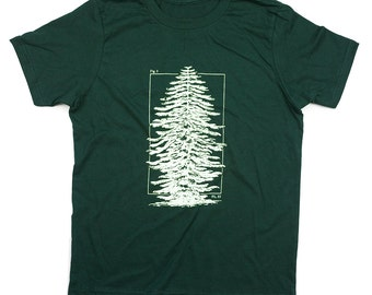 Pine Tree Youth T-Shirt   Future Scientist, Earth Day, Botany Tee Shirt, Science Kid Shirt, Biology, Smart Kid, STEM, Camping