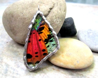 Madagascan Sunset Moth Pendant