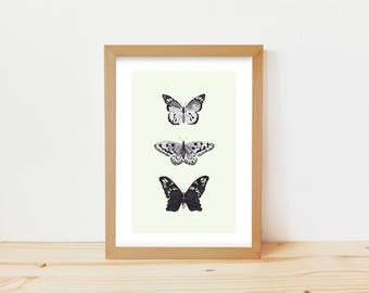 butterfly drawing, butterfly print, butterfly illustration, animal drawing, scientific print, animal ink drawing, insect print, illustration