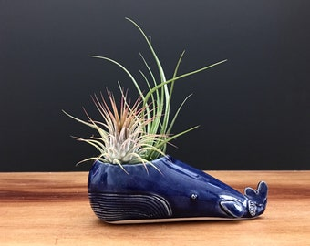whale vase ONE / whale air plant holder / whale bud vase / blue whale / pricd for one whale