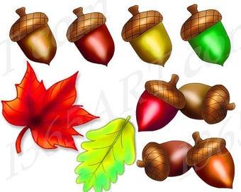 50% OFF Acorn Clipart Set, Scrapbooking, Party Invitations, Acorns, Fall Leaves, Nature Clip Art, Hand Drawn Graphics, Instant Download