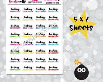 Vinyl F*cking Adult Today Removable Planner Stickers