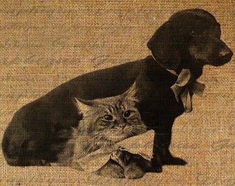 Dachshund Dog With Kitty Cat Friends Friendship Doxie Digital Image Download Sheet Transfer To Pillows Tote Bags Tea Towels  Burlap No. 2743