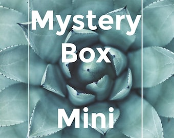 Mini mystery box, stationery addict, skinny washi tape, bookmark, planner stickers, journal accessories, gift box, lucky dip, sticky notes