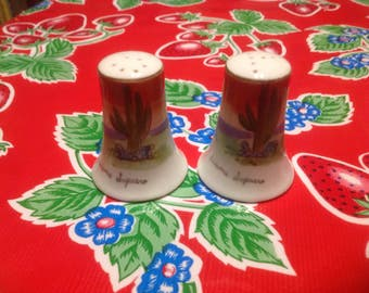 Vintage hand painted ceramic Arizona Saguaro cactus salt and pepper shakers- souvenir of Arizona, Made in Japan