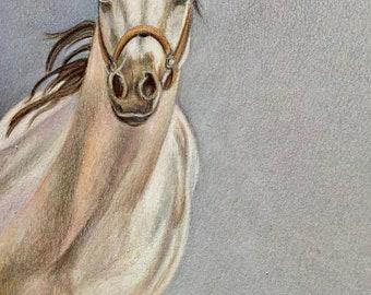 """Equine Art original drawing, """"Full Circle"""""""