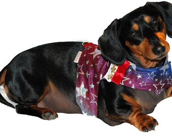 The Lucky Star harness vest set 5 sizes