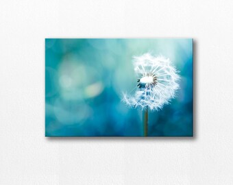 Dandelion photography canvas wrap 12x12 24x36 fine art photography canvas print dandelion canvas art wall decor canvas gallery wrap teal art