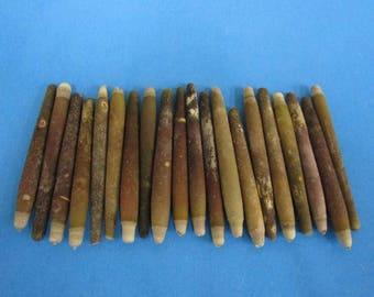 Pencil Sea Urchin Spines (Bag)  (EA)