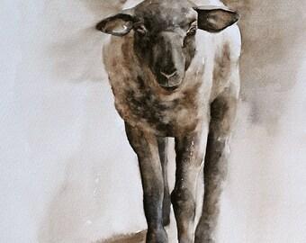 baby shower gift for baby gift Lamb art PRINT of original watercolor sheep painting 8x10 modern minimalist Baby Lamb art sheep easter decor