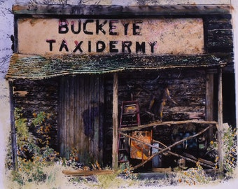 Abandoned photography | Lincolnville Taxidermist | Hand-painted photography | Old buildings  | Left behind | Antique building photo