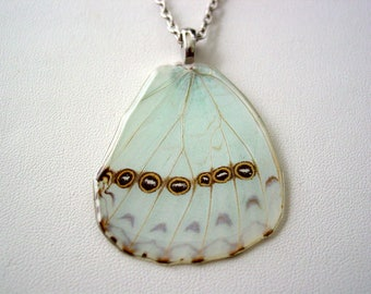Ice Blue Morpho Catenarius Eye Spots Necklace Real Butterfly Wings Jewelry 24 Inch Chain A2