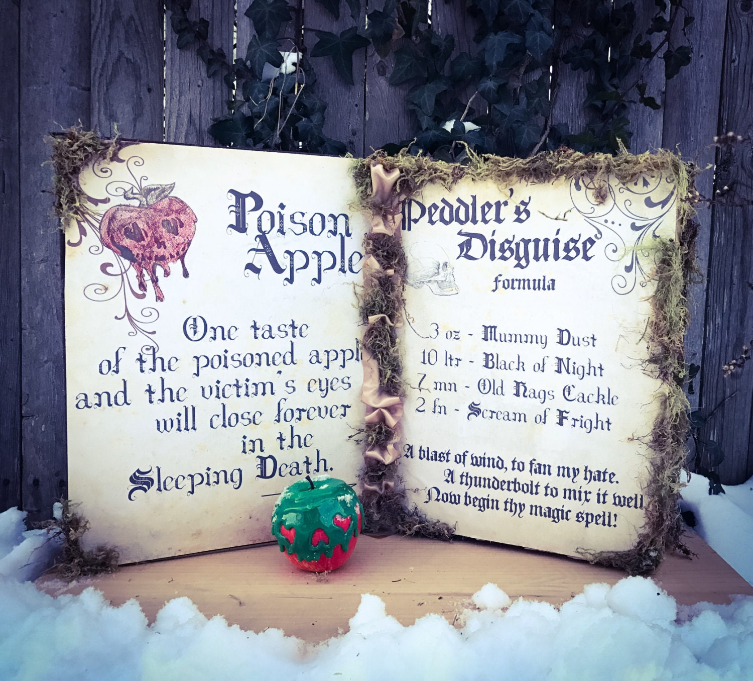 Evil Queen Snow White Spellbook with or without Poison Apple