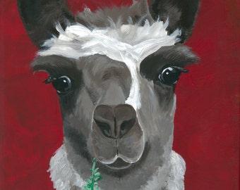 Llama print 'Sage' from original canvas painting.  Llama decor, llama print, llama painting