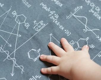 science crib bedding, science baby bedding, chemistry bedding, gray baby bedding, science baby, science crib sheet, chemistry nursery