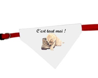 Collar bandana for dog humor me