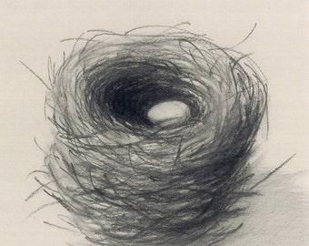73 Nest2