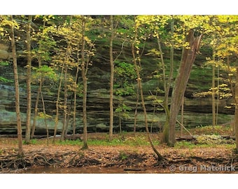 """Fine Art Color Landscape Nature Photography of Starved Rock State Park in Illinois - """"Autumn Gold in Illinois Canyon 1"""""""