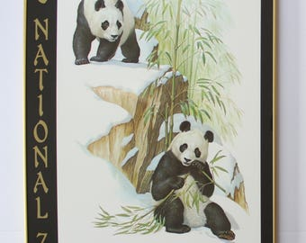 Vintage Framed The National Zoo Washington D.C. Giant Pandas By Edward J. Bierly Poster 1970s