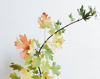 Fall Leaves Image | Styled Stock Holiday Thanksgiving with blank space & leaves for Blogs Websites and Instagram
